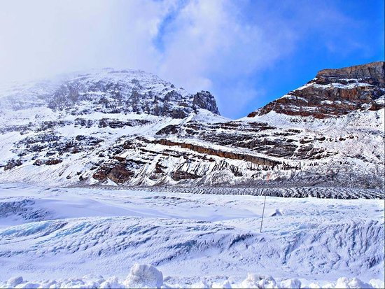 Picture Of Columbia Icefield Scenic Walks