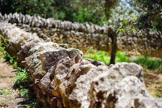 Lacoste, France: Les murets en pierre du Luberon