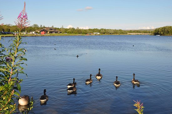 Tredegar, UK: Our lakeside paths are perfect for walkers, joggers and cyclists of all ages