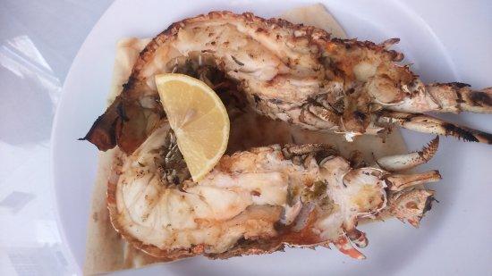 Turkish House Restaurant: DSC_0804_large.jpg