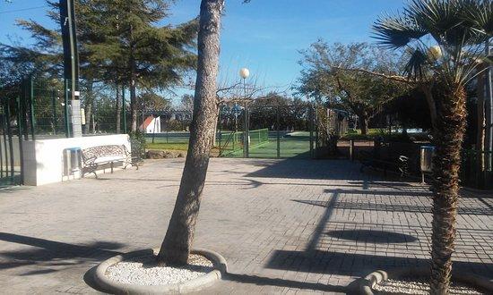 Lliria, Spain: Bar Polideportivo Tsunami