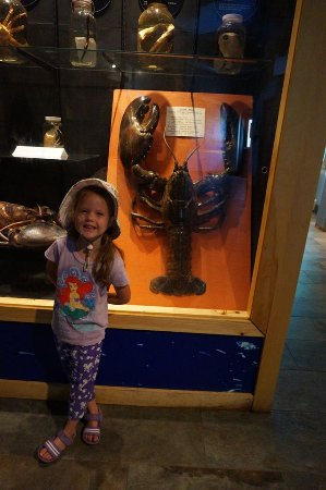 Saint Andrews, Canada: Giant lobster!!