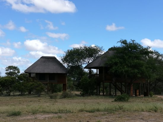 nThambo Tree Camp: IMG_20170207_093643_large.jpg