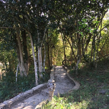 Ban Xieng Lom, Laos: photo4.jpg
