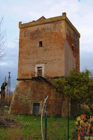 Torre Niccolina