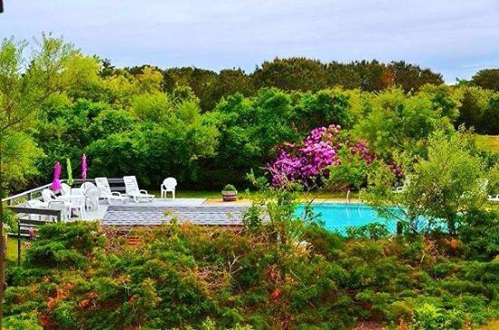 Island Inn: Pool