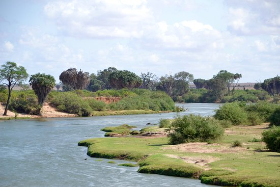Ogutu Safari