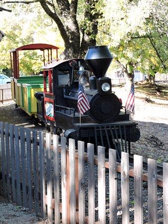 Camino, CA: Train ride around the lake