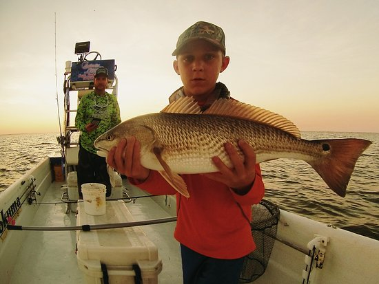 Saltwater Assassin Fishing Charters Photo