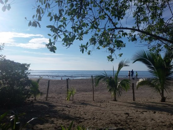 Junto al Rio Beachfront Bungalows and Suites Photo