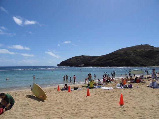 Fun Hawaii Travel - Day Tours: Hanauma Bay Beach
