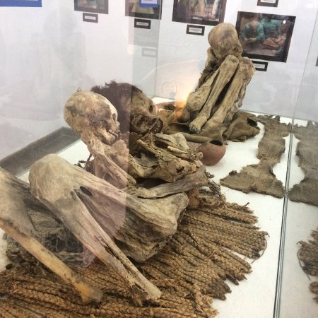 Museo Charcas (University Museum Colonial & Anthropological): More mummies inside Museo Charcas