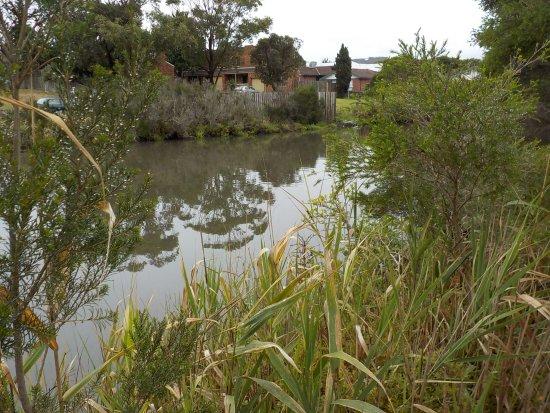 Frankston, Austrália: The Estuary