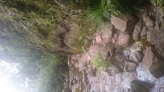 Greyton, Republika Południowej Afryki: gentle streams and abundance of Fynbos