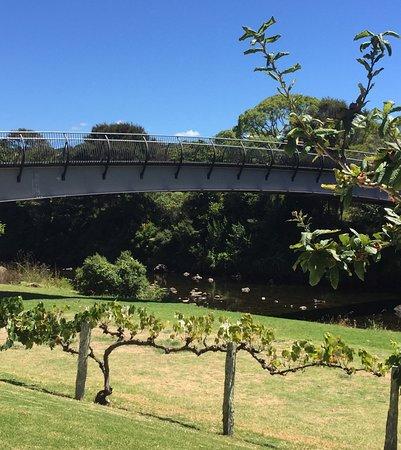 Керикери, Новая Зеландия: photo0.jpg