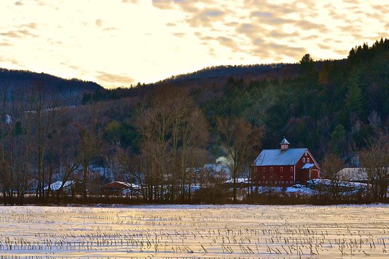 Rochester, VT: Liberty Hill Farm from Rte. 100