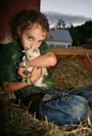 โรเชสเตอร์, เวอร์มอนต์: farm kittens