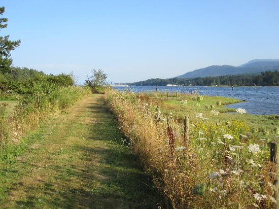 Ladysmith, Kanada: Stroll around on the scenic waterfront