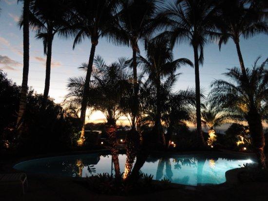 Pineapple Inn Bild