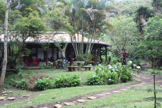 Hotel Bosque Las Nubes Photo