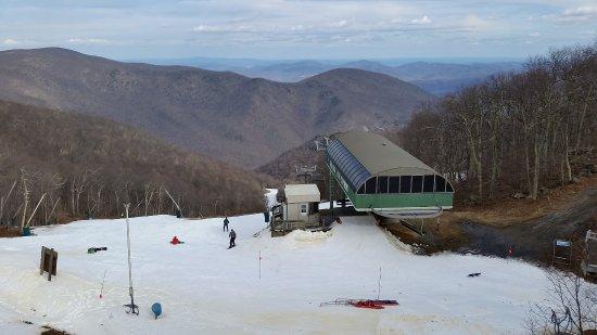 Wintergreen Picture