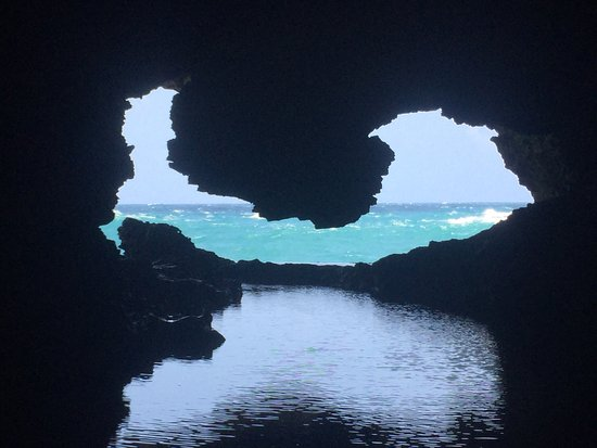 Animal Flower Cave : Absolutely stunning views. Breathtaking. If you have the chance to get there it is a must see. I