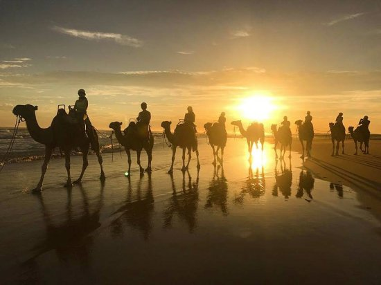 Anna Bay, Australië: Our camel caravan at sunset with Sid and Daisy in the lead