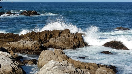 Pacific Grove Oceanview Boulevard: Scenery at Pacific Grove