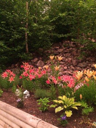 Ely, MN: Flower Garden