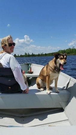อิลิ, มินนิโซตา: Fishing Bear Island Lake