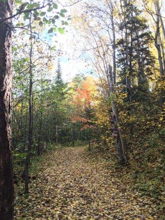 อิลิ, มินนิโซตา: Fall Hiking