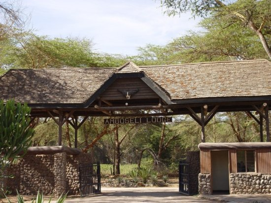 Jemmy Safaris & Day Trips