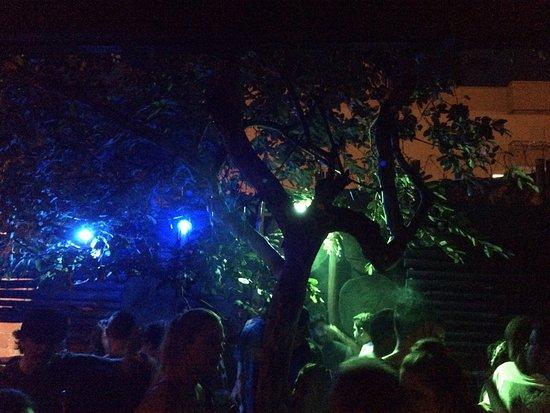 Vinil cultura bar