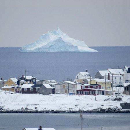 Bonavista  - Iceberg