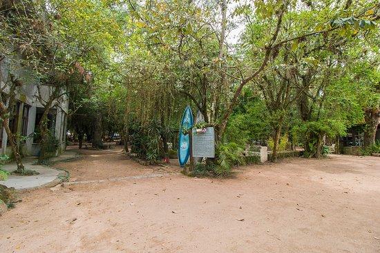 Barra do Ribeiro Photo