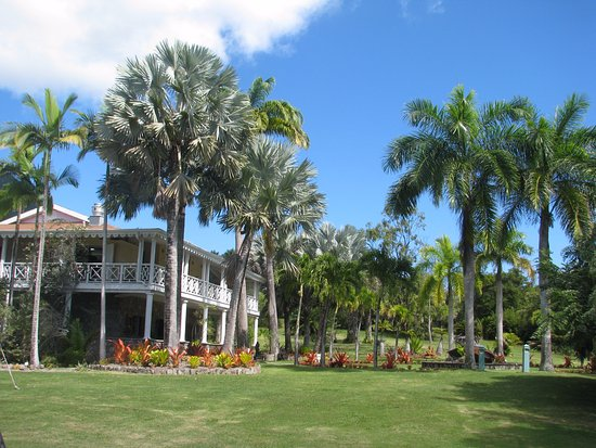Nevis Pictures Traveller Photos Of Nevis St Kitts And