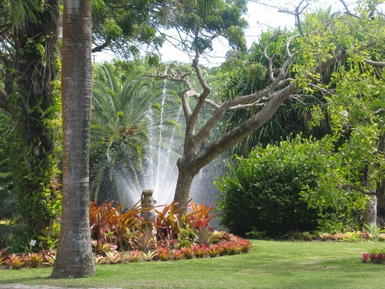 Nevis: The lake and fountain at the Botanical Gardens