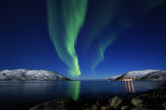 Arctic Explorers Tromso: The sky put on a very memorable show!!!