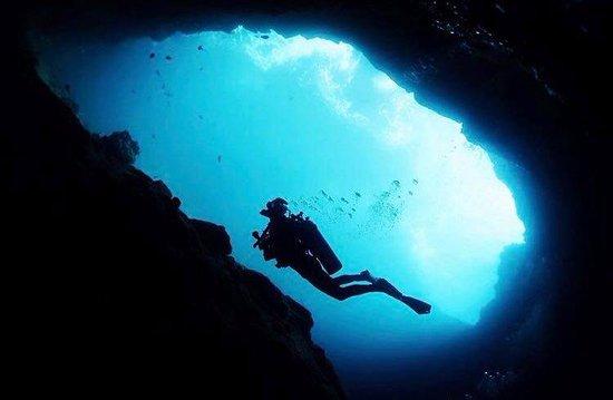 Diving Line ASD
