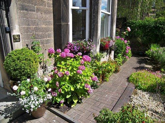 Highfield Guest House: Front Garden