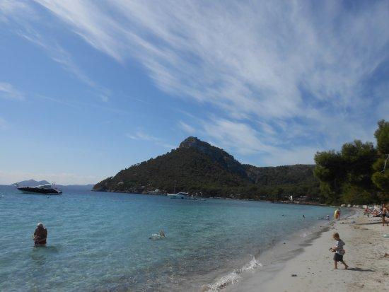 Playa Formentor - Billede af Formentor Playa, Formentor - TripAdvisor