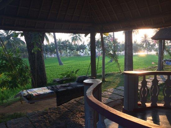 Mowgli Guest House: photo3.jpg