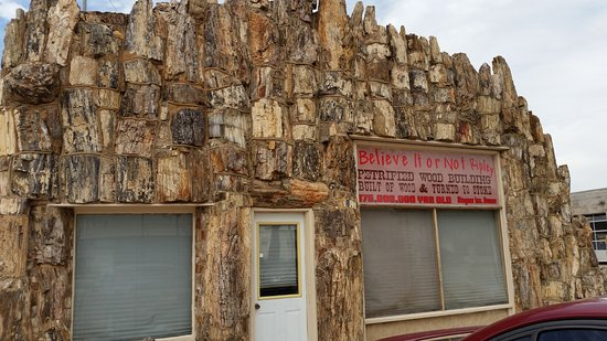 Petrified Wood Gas Station in Lamar, Colorado