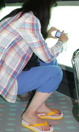 Sea Sky Hakuai: 座席の真横が海の中