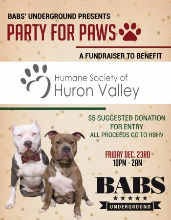 Babs' Underground: Our annual event to help out the furry guys