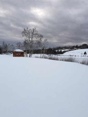 Blackville, Canada: Country Haven Lodge & Cottages