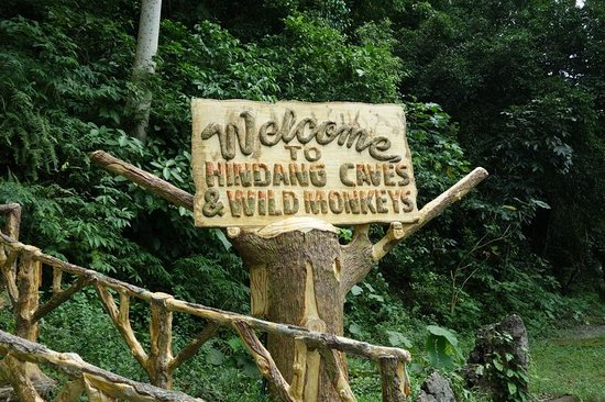 Hindang Caves & Wild Monkeys: hindancaves entrance
