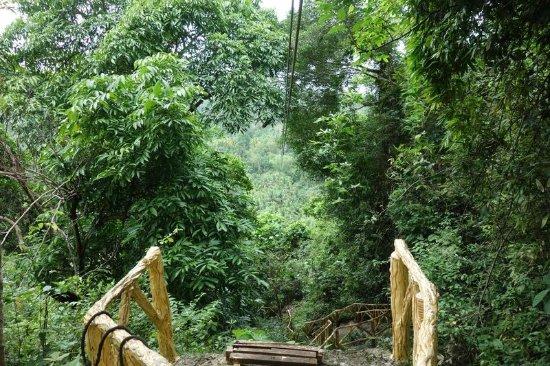 Hindang, Philippines: zipラインのスタート・・ここから一気に降ります・・。