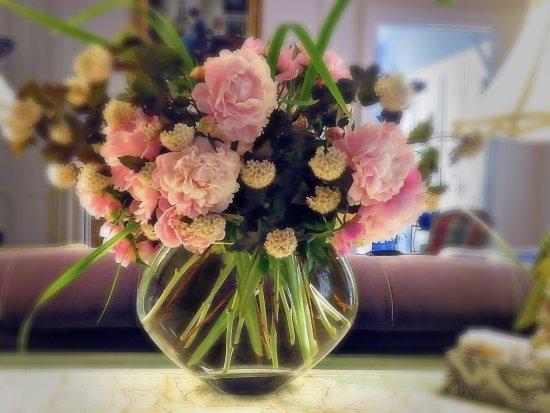 Auburn, Nova York: Flowers from the 10 Fitch gardens