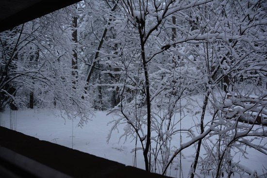 Lake Delton, WI: View to the east, bedroom window